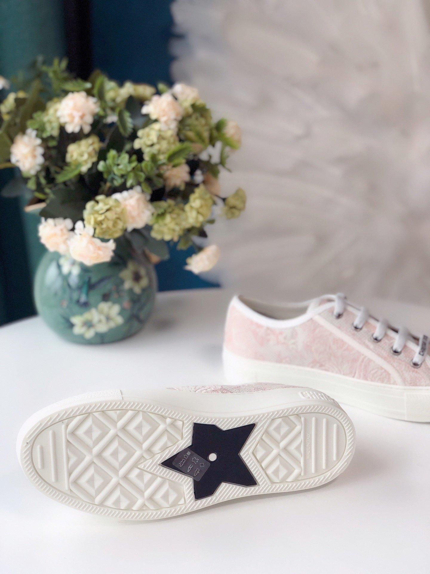 DIOR 2020 秀款板鞋 棉质TOILE DE JOUY 刺绣 WALKNDIOR 运动鞋(图7)