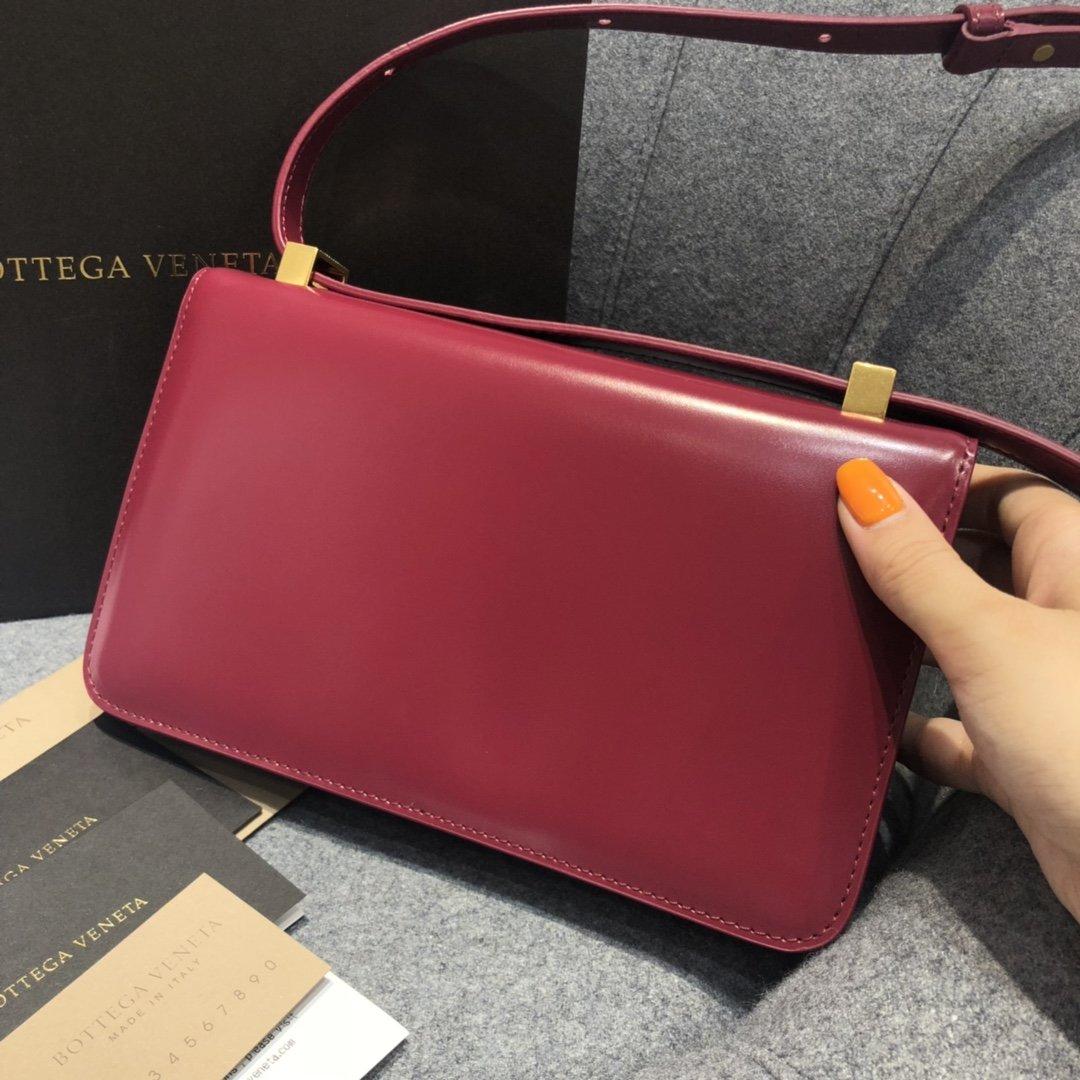 Bottega Veneta宝提嘉CLASSICMINI 专柜明星同款(图10)