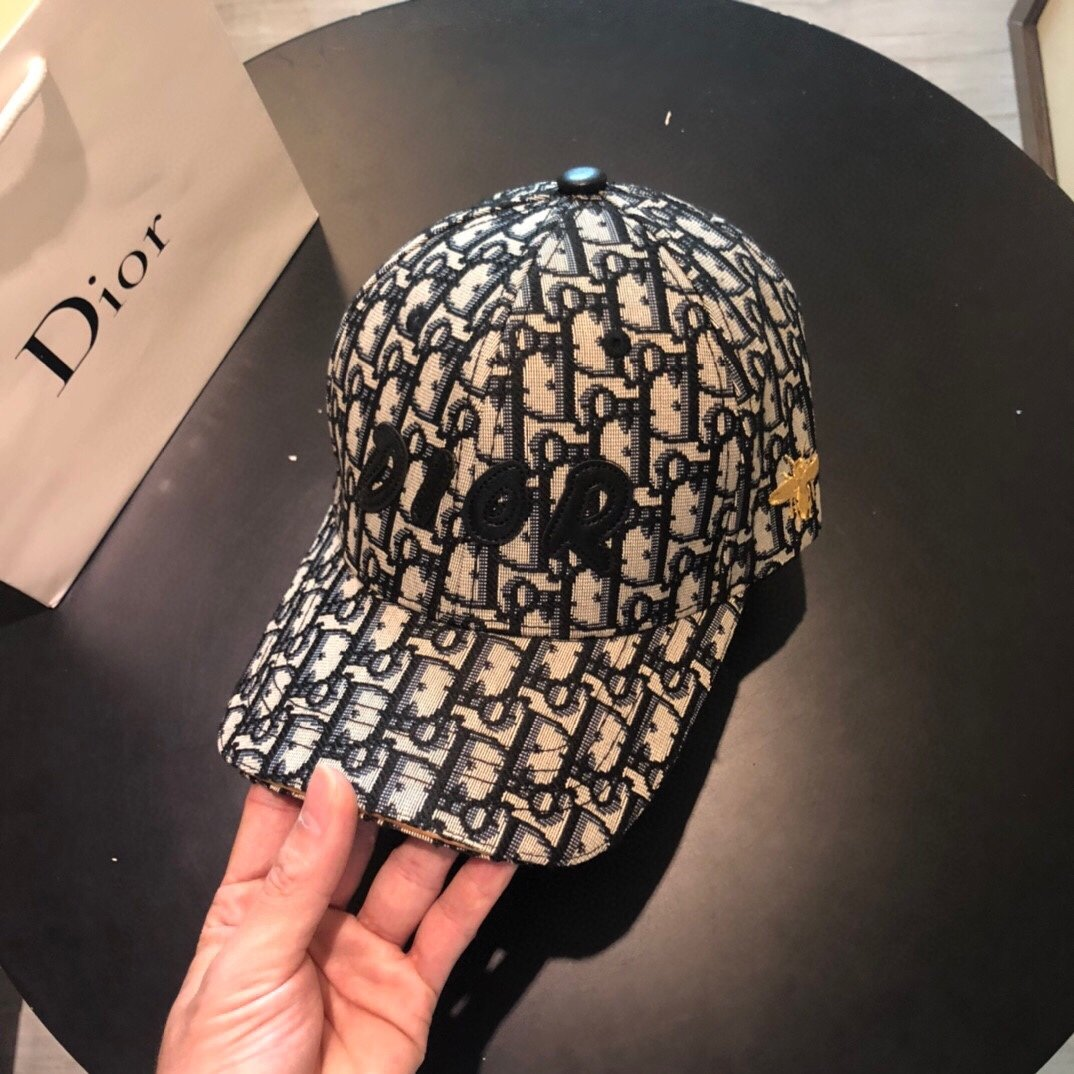 Dior迪奥新款 蜜蜂刺绣 原版帆布原单棒球帽(图9)