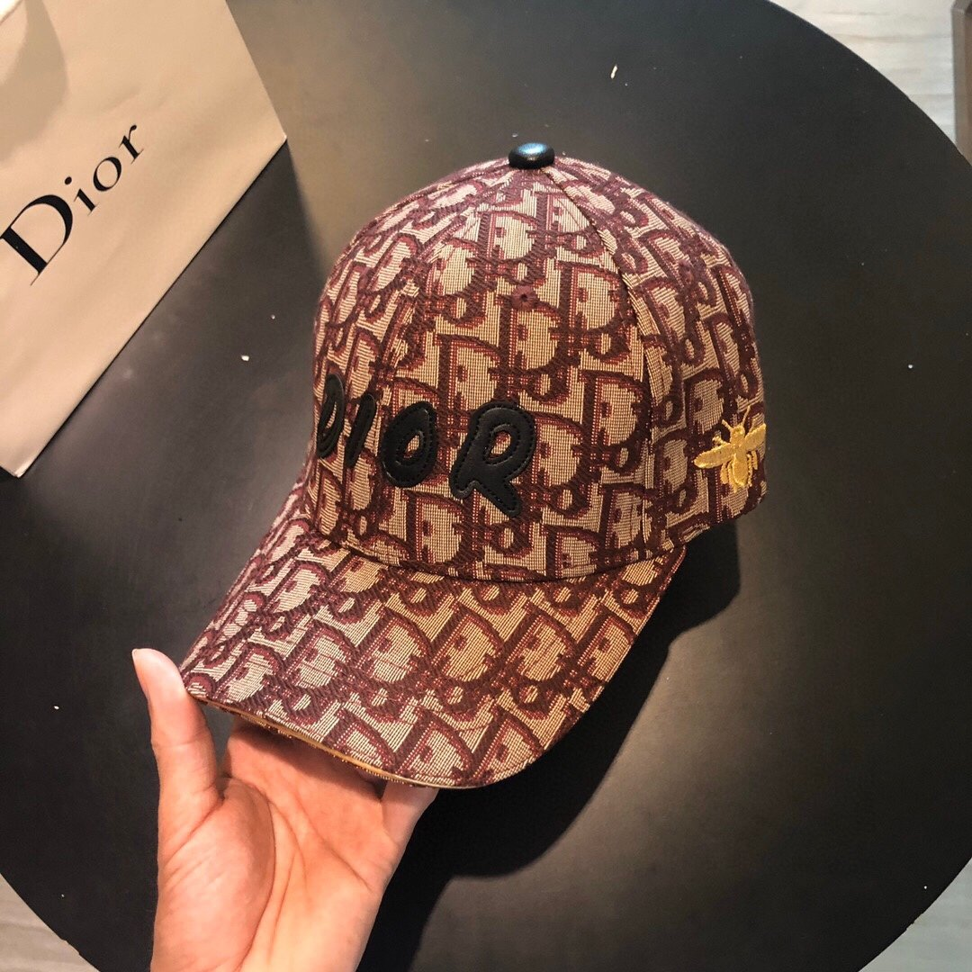 Dior迪奥新款 蜜蜂刺绣 原版帆布原单棒球帽(图4)
