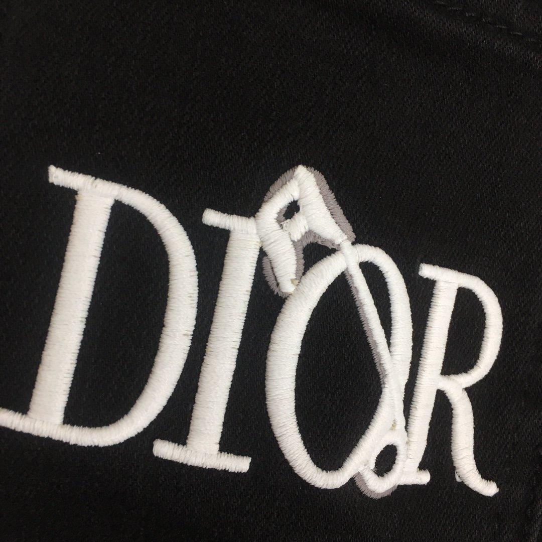 Dior新款后背logo字母别针刺绣